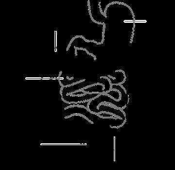 diagram-_1907.png