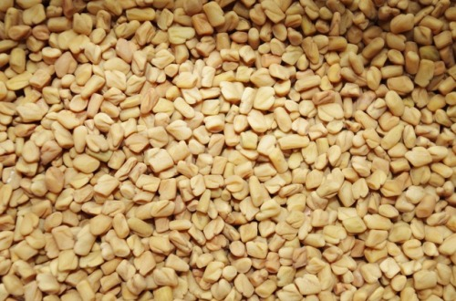 fenugreek_1114.jpg