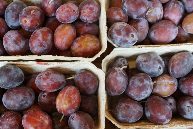 plums-