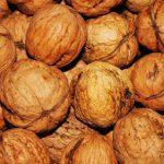 walnut_2238.jpg