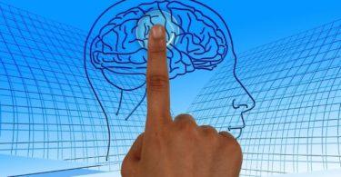 दिमाग क्या है - दिमाग के बारे में जरुरी जानकारी - Brain kya hota hai