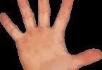 जाने उंगली के नाम जैसे की अंगुष्ठ, तर्जनी, मध्यमा, अनामिका और कनिष्ठा, इनके कार्य और रोग आदि, finger names, their work and diseases in hindi.