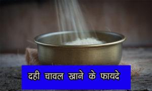 दही चावल खाने के फायदे