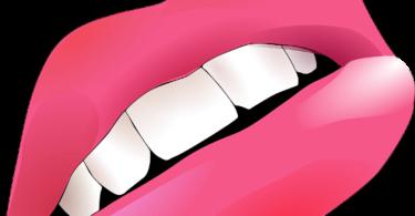 विस्तार में जाने होंठ की संरचना और बीमारियां हिंदी में, know in details about lips structure and diseases in hindi and its home remedies.