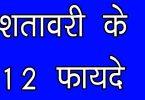 शतावरी के फायदे क्यूंकि इसका चूर्ण और पाउडर भी लाभ करता है नींद, माइग्रेन, ब्रेस्ट मिल्क, मधुमेह, बुखार और जलन और सुन्दरता में, shatavari health benefits in hindi.