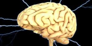 दिमाग की कमजोरी का कारण हो सकते हैं यह आहार