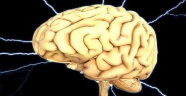 दिमाग की कमजोरी का कारण और दिमाग तेज़ करने के लिए कौन से आहार नहीं खाएं