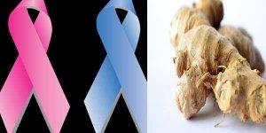 कैंसर से लड़ने वाले 11 आहार