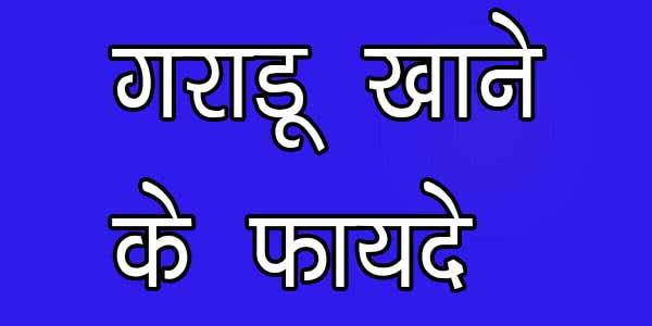 गराडू के फायदे आपकी सेहत के लिये, jane gradu ke fayde apki sehat ke liye in hindi