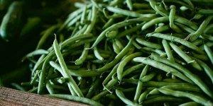 ग्रीन बीन्स के फायदे आपकी सेहत के लिए