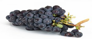 अंगूर के बीज के तेल के फायदे