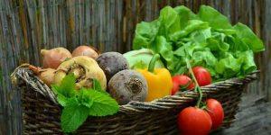 सब्जियों के छिलको के फायदे
