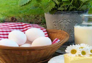 कैल्शियम युक्त खाद्य पदार्थ जानने से पहले आइए जानते हैं कैल्शियम क्या है, what is calcium and calcium rich food.