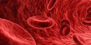 खून साफ होने के लिए क्या खाएं