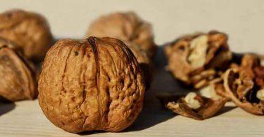 अस्थमा के रोगियों के लिए फायदेमंद है अखरोट