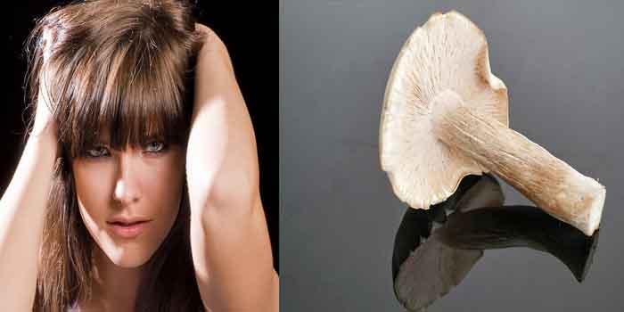 त्वचा के लिए मशरूम के फायदे