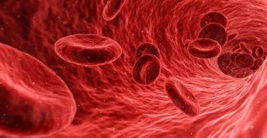 स्वस्थ मनुष्य के शरीर में कितना खून होता है