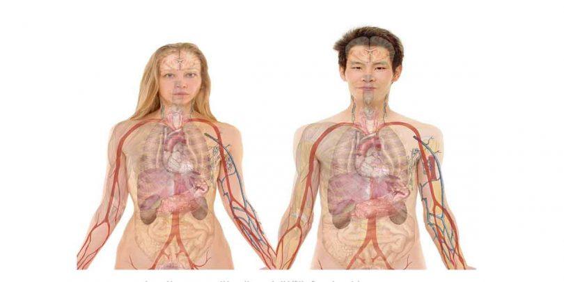 किडनी रोग में खान पान