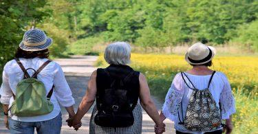 रजोनिवृत्ति के घरेलू उपचार