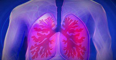 सांस की तकलीफ का इलाज है ये आहार