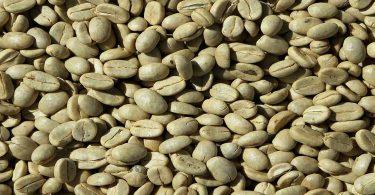 ग्रीन कॉफी बीन के फायदे