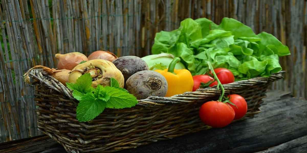 सब्जियों का सेवन