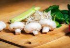 मशरूम खाने के फायदे और नुकसान