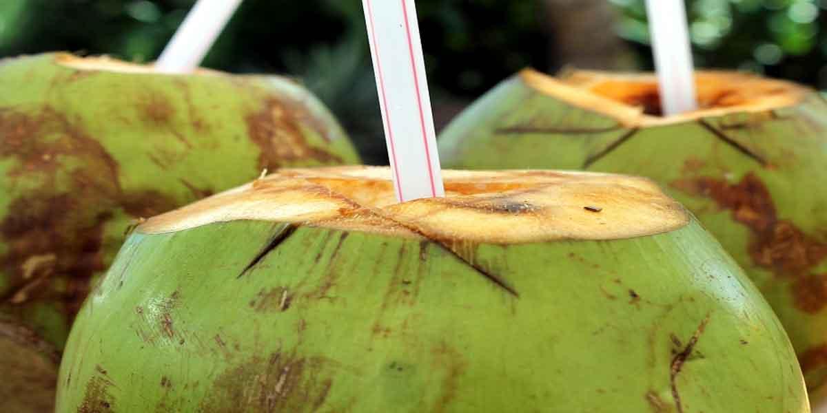 गैस के लक्षण को कम करे नारियल पानी