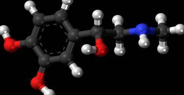 सेरोटोनिन हार्मोन क्या है तथा इसे बढ़ाने के उपाय